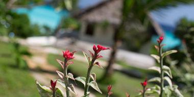 Manta Resort, Gartenanlage
