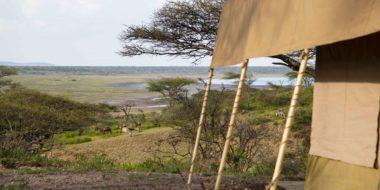 Camp Zebra, Ausblick vom Zelt aus