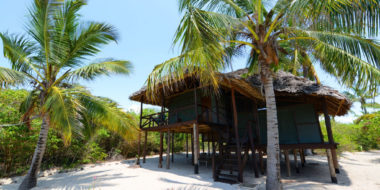 Simply Saadani Camp, Außenbereich