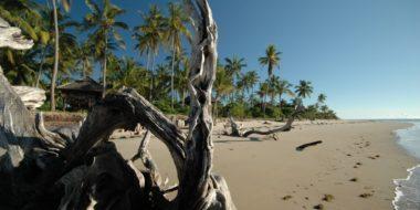 Simply Saadani Camp, Der Indische Ozean