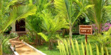 The Zanzibari Hotel, Gartenbereich