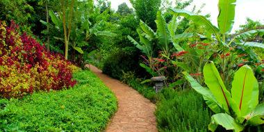 Endoro Lodge, Gartenanlage