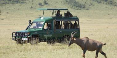 Serena Safari Lodge, Tierbeobachtung