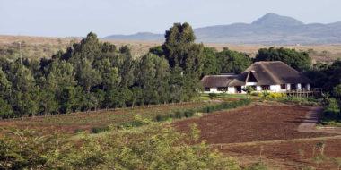 Ngorongoro Farm House, Umgebung