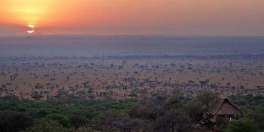Serengeti Pioneer Camp, Ausblick von der Lounge