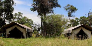 Serengeti Savannah Camps, Wohnzelte